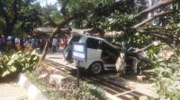 Mobil Tertimpa Pohon Tumbang di Universitas Pancasila, 1 Orang Tewas
