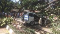 Universitas Pancasila Akan Tanggung Biaya Pengobatan Korban Pohon Tumbang