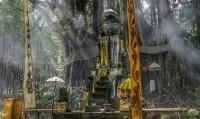 Hutan Gunung Agung Terbakar, Api Merambat Hanguskan Pura Bersejarah di Bali