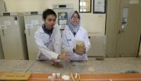 Tulang Kambing Bisa Jadi Materi Tiruan Tulang yang Rusak