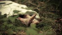Mayat Pria dengan Luka Tusuk Ditemukan di Kebun, Diduga Korban Begal