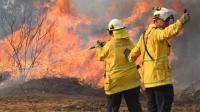 Kebakaran Hutan Australia, WNI Diimbau Tingkatkan Kewaspadaan