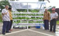 Taman Parkir Kampus Jadi Lebih Asri berkat Sayur Hidroponik