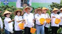 BNI <i>Smartfarming</i>, Kembalinya Kejayaan Kopi Sidikalang