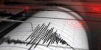 Gempa Magnitudo 5,5 Goyang Halmahera Barat