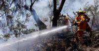 Kebakaran Melanda 12 Hektare Lahan Gambut di Indragiri Hulu Riau