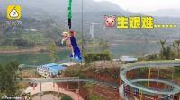 Taman Hiburan di China Gunakan Babi untuk Promosi Atraksi Bungee Jumping