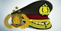Terlibat Kasus Pembalakan Liar dan Narkoba, Sejumlah Polisi di Kalteng Dipecat