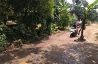 8 Tahun Rusak, Warga Serang Tanam Pohon Pisang di Tengah Jalan