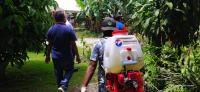 Cegah Corona, DPD Partai Perindo Kota Ambon Lakukan Penyemprotan Disinfektan