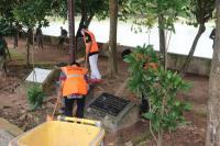 Langgar PSBB, 21 Warga Palembang Dihukum Bersihkan Taman Kota