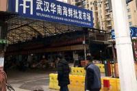 Ahli Epidemiologi China Sebut Virus Corona Tidak Berasal dari Pasar di Wuhan