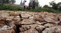 Waspada, Gunungkidul dan Yogyakarta Timur Berpotensi Alami Kekeringan