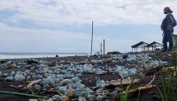 Waspada, Ubur-Ubur Beracun Bertebaran di Pantai Selatan