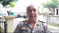 Kawanan Tawon Mengamuk, 2 Orang Tewas dan 10 Terluka