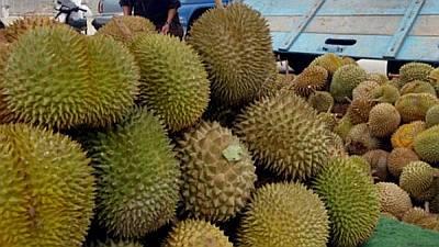 Durian, Makanan Terbau di Dunia