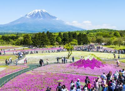 Liburan ke Jepang, Wisatawan Indonesia Lebih Pilih Naik Business Class