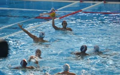 PB PRSI Berencana Gelar Liga Polo Air pada Tahun Depan