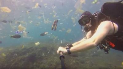 Kompilasi Kasus Buang Sampah ke Laut yang Sempat Viral