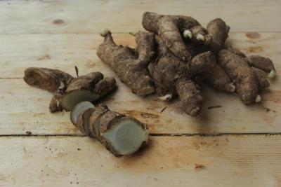 Temu Ireng, Tanaman Herbal yang Ampuh Atasi Kebotakan