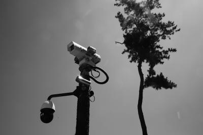 Kesal Jualannya Sering Dicuri, Tukang Gorengan Pasang CCTV!