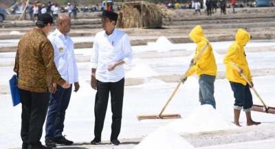 Tinjau Tambak Garam NTT, Jokowi: Kita Masih Impor 3,7 Juta Ton