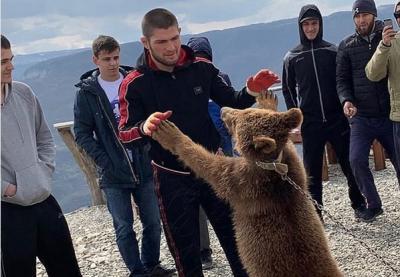 Khabib Dikecam Gara-Gara Duel dengan Beruang