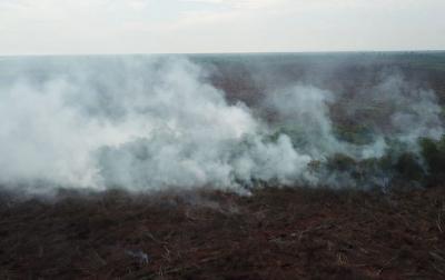 DPR: Pembakar Hutan Selevel dengan Teroris