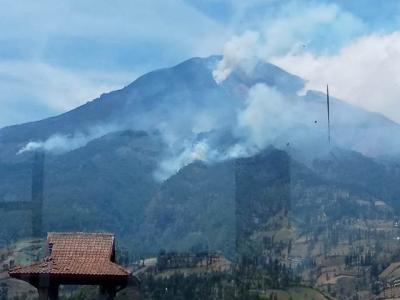 5,5 Hektare Hutan Lindung di Gunung Sumbing Ludes Terbakar
