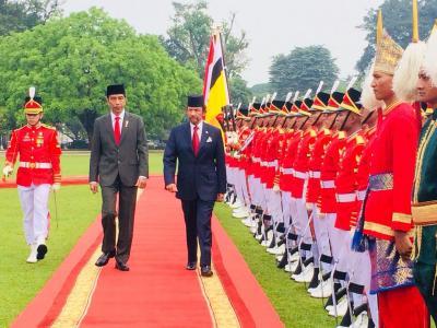 Jokowi Menjamu Sultan Brunei, PM Australia hingga Wapres China Jelang Dilantik