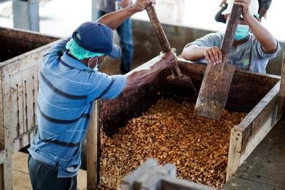 Fasilitasi Petani Kakao, Bea Cukai Bali Nusra Serahkan Sertifikat Fasilitas KITE-IKM