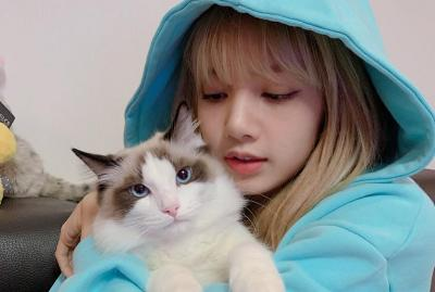 Cara Ampuh Lisa BLACKPINK Hilangkan Stres, Peluk Kucing