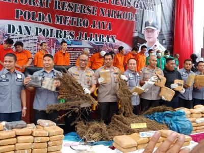 Polisi Temukan 5 Hektare Ladang Ganja di Mandailing Natal Sumut