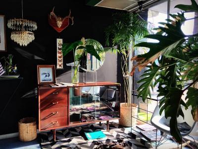 Ide Dekorasi Taman Indoor Minimalis Modern, Bikin Rumah Jadi Nyaman!