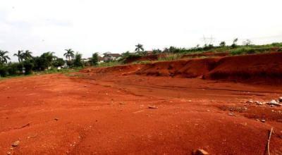 Pembangunan Ibu Kota Baru Masuk Tahap Pemetaan Lahan