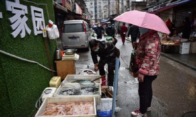 Wabah Virus Korona, Masyarakat Jangan Konsumsi Makanan Berisiko Pembawa Penyakit