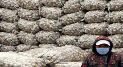 Alasan Mendag Belum Loloskan Sisa Izin Impor Bawang Putih