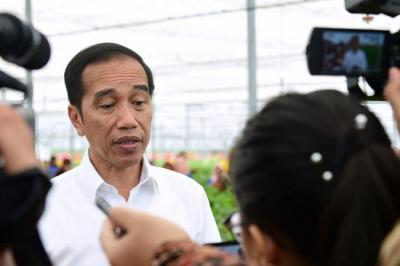 Presiden Jokowi Secepatnya Akan Ambil Keputusan Evakuasi WNI di Kapal Diamond Princess