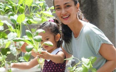PSBB, Cantiknya Atiqah Hasiholan Sibuk Memanen Sayuran Hidroponik dengan Anak