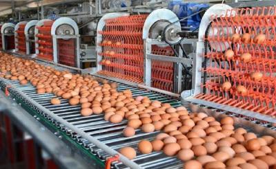 BKPM: Di Sektor Manufaktur, Industri Makanan Paling Diminati