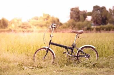 Mengintip Sepeda Lipat Buatan Anak Negeri, Gak Kalah Loh dengan Sepeda Mahal