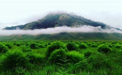 Mau Main ke Gunung Bromo, Harus Tunjukkan Surat Keterangan Sehat Bebas Covid-19