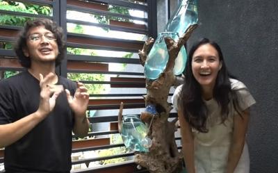 Intip Keseruan Nadine dan Dimas Anggara Pelihara Ikan Cupang