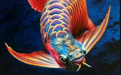 Daftar Ikan yang Sedang Tren Selama Pandemi Covid-19