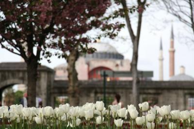 Hagia Sophia Dikembalikan Jadi Masjid Usai Keputusan Pengadilan