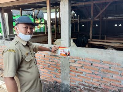 Rumah Pedagang Hewan Kurban di Wonogiri Wajib Pasang Stiker