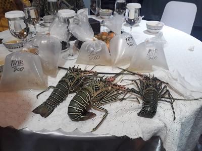 Ekspor Dibuka, Harga Benih Lobster Jadi Mahal