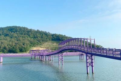 Berkunjung ke Pulau Ungu di Korea, Tempat yang Serba Ungu