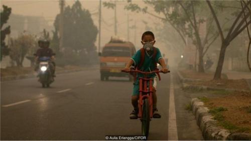 Perubahan Iklim: Gagal Menangani Pemanasan Global Adalah Tindakan Bunuh Diri